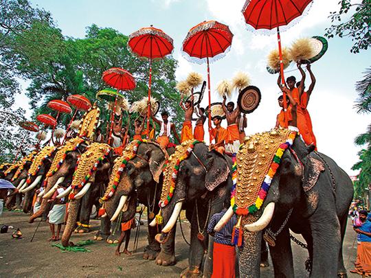 elephants at thrissur pooram- pooram cancelled for 2020