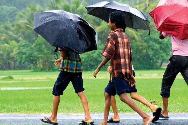 Umbrella Season in Kerala